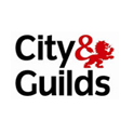 Electrician Aldershot City & Guilds